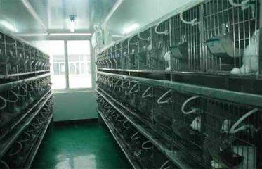 动物实验室工程好做吗