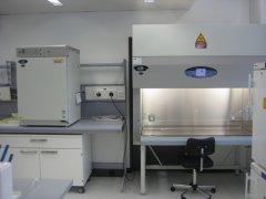 什么叫P2实验室?
